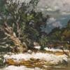 Elliott Dangerfield Snow in the Grand Canyon
